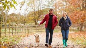 Pet Friendly Short Breaks in Derbyshire